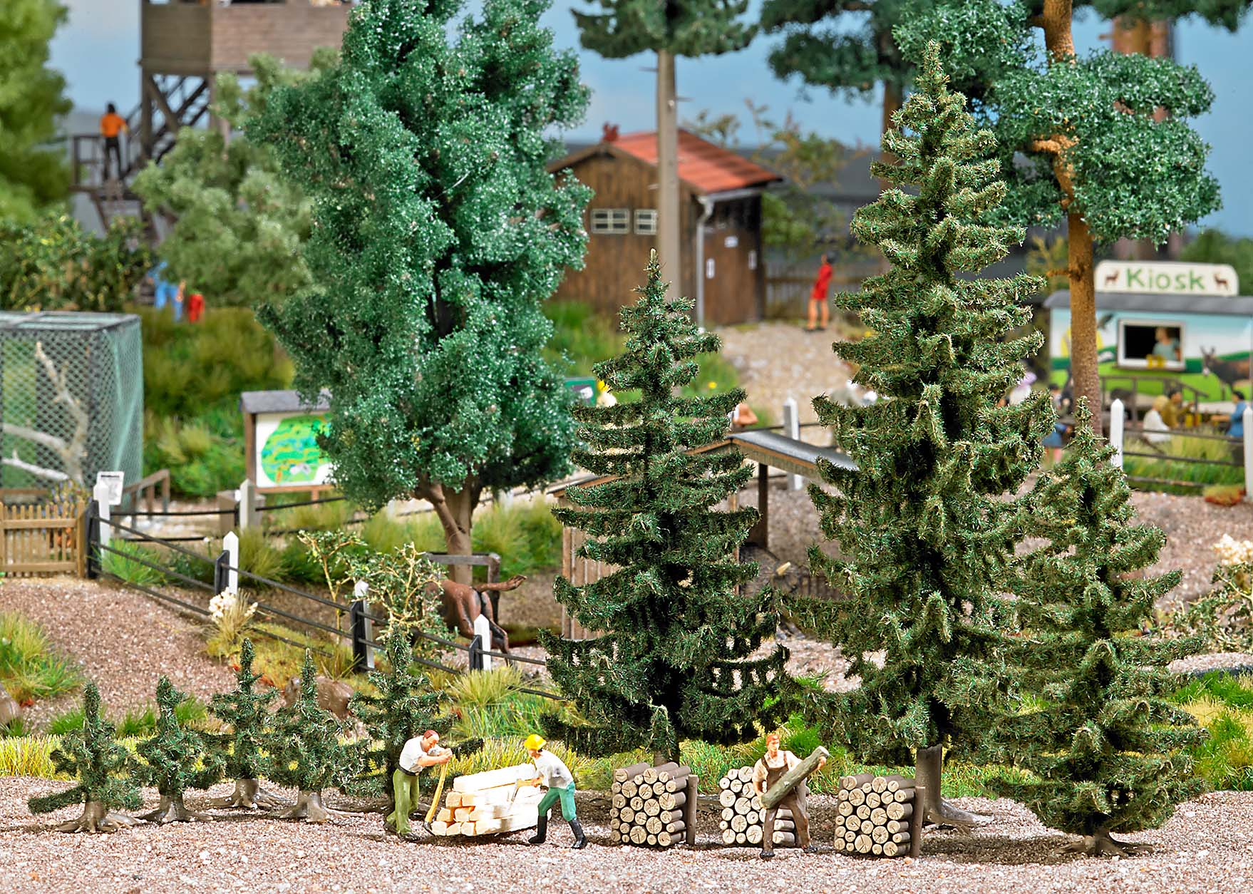 Spruce tree forest set
