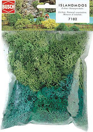 Cork//lichen Assortment